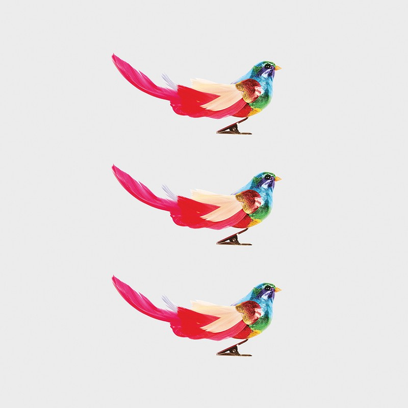 Rainbow birds set of 3